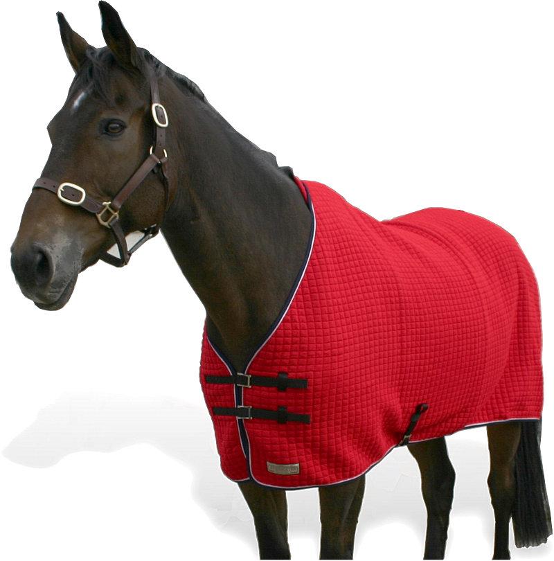 Thermatex T2000 Horse Rug\n