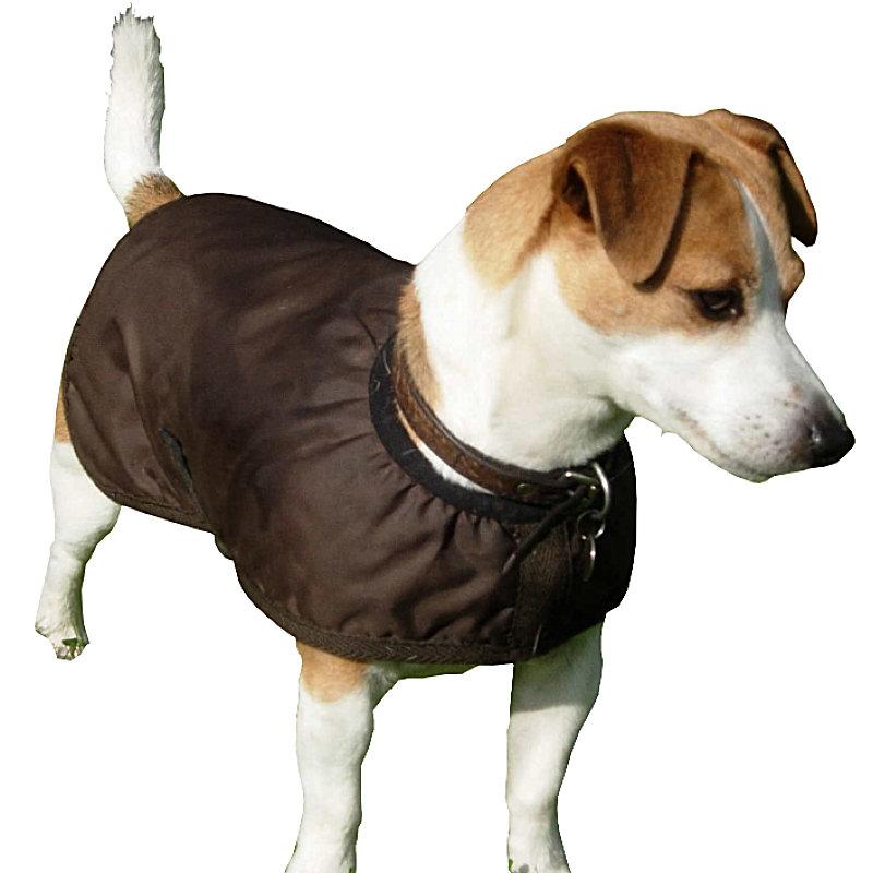 Best Dog Coats Uk