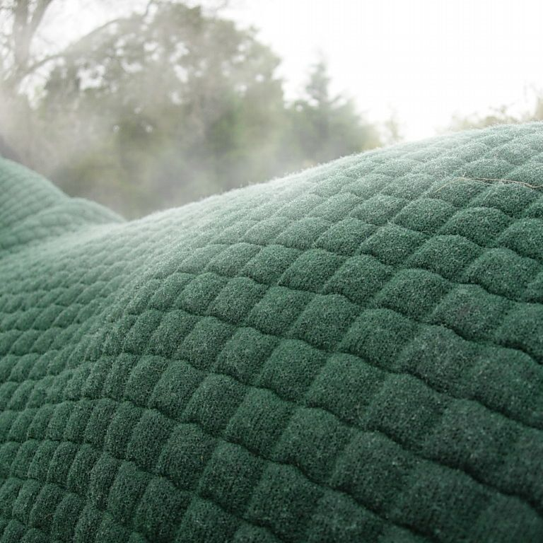 Thermatex Exercise Rug